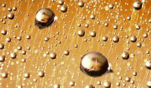 gold-drops